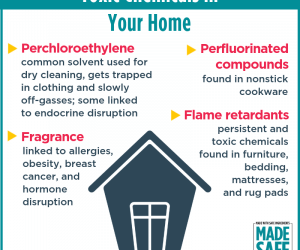 10 Steps to Get Toxic Chemicals Out of Your Home