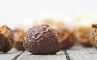 47 Wonderful Benefits of Soapnuts